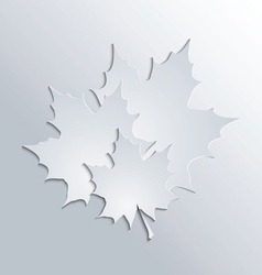 maple leaves silhouettes on gray background vector image