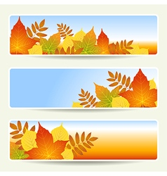 Leaves banners empty vector