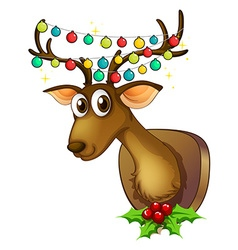 Christmas theme with reindeer and lights vector image