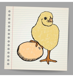 Egg and chicken in doodle style vector image