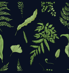 Fern green leaves on black background hand drawn vector