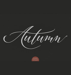 Hand drawn lettering - autumn elegant modern vector