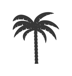 palm tropical tree isolated icon vector image vector image