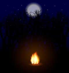 flame in the night vector image