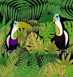 Picture toucan in the jungle vector