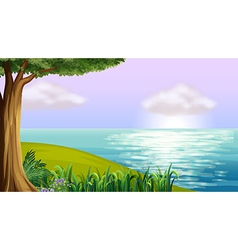 A clear blue sea vector image vector image