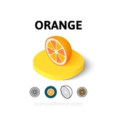 Orange icon in different style vector