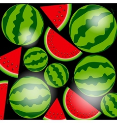 Background From Watermelon vector image vector image
