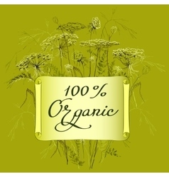 label template with herbs vector image vector image