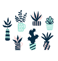 Succulents plants set vector