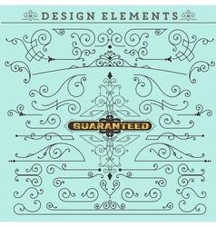 Vintage Ornaments Decorations Design vector image