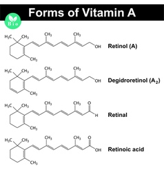 Forms of vitamin a vector