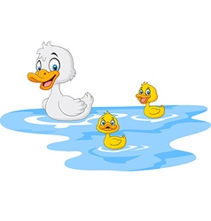 Cartoon funny mother duck with baby duck floats vector