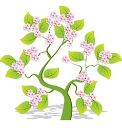 Single flowering tree vector