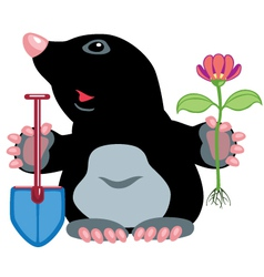 cartoon mole vector image vector image
