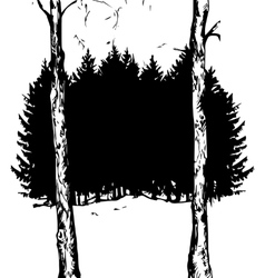 Fir forest vector