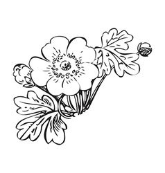 Floral bush retro black on white hand drawn vector image vector image