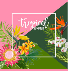 Tropical flowers summer banner graphic vector
