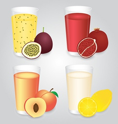 Fresh fruits juice in glasses set vector