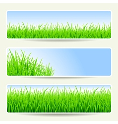 Grass banners empty vector