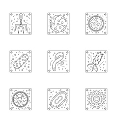 Microorganisms line icons collection vector