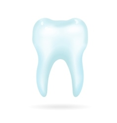 Tooth on a white background vector