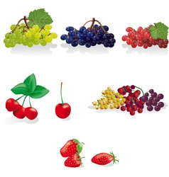 cherry strawberry and grape vector image vector image