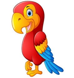 Cute macaw bird cartoon posing vector