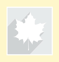maple leaf silhouette on greeting card vector image