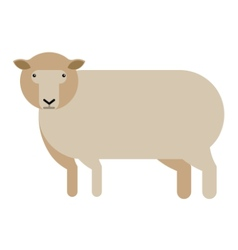 Sheep flat icon vector