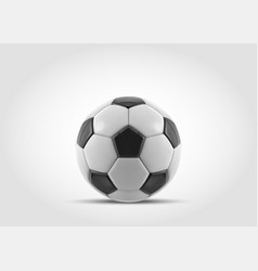 soccer ball realistic soccer ball or vector image