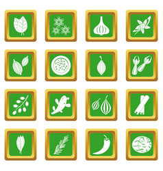 Spice icons set green vector