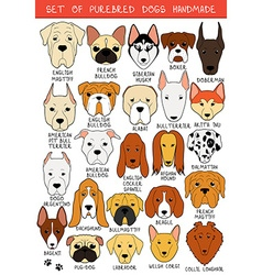 Set of 24 colored dogs different breeds handmade vector