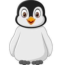 Cute baby penguin posing isolated vector