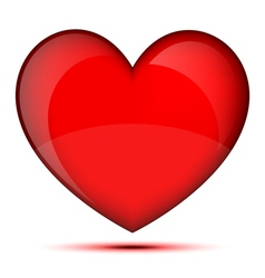 Bright healthy heart vector image