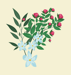 Jasmine flower leaves ornament floral vector