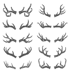 Set of hand drawn deer horns vector image