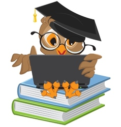 Owl sitting on books and holding a laptop vector