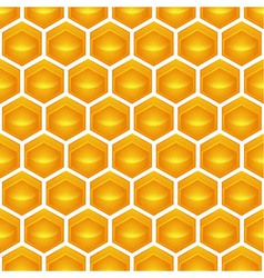 Honeycomb vector