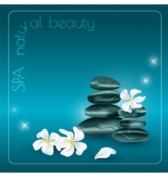 Dark stones and white flowers vector