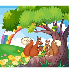 A tree with squirrels vector image vector image