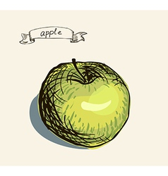Artistic apple sketch vector