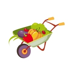 Fresh Vegetables Harvest In Wheel Barrel Farm And vector image
