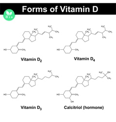 Forms of vitamin d vector