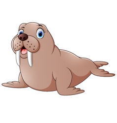 Cartoon cute walrus vector image
