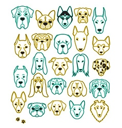 Set of 24 different breeds dogs neon handmade head vector