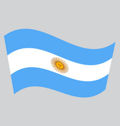 Flag of argentina waving on gray background vector