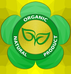 Organic Natural Product Label vector image