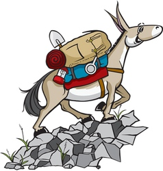 pack mule vector image