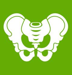Pelvis icon green vector